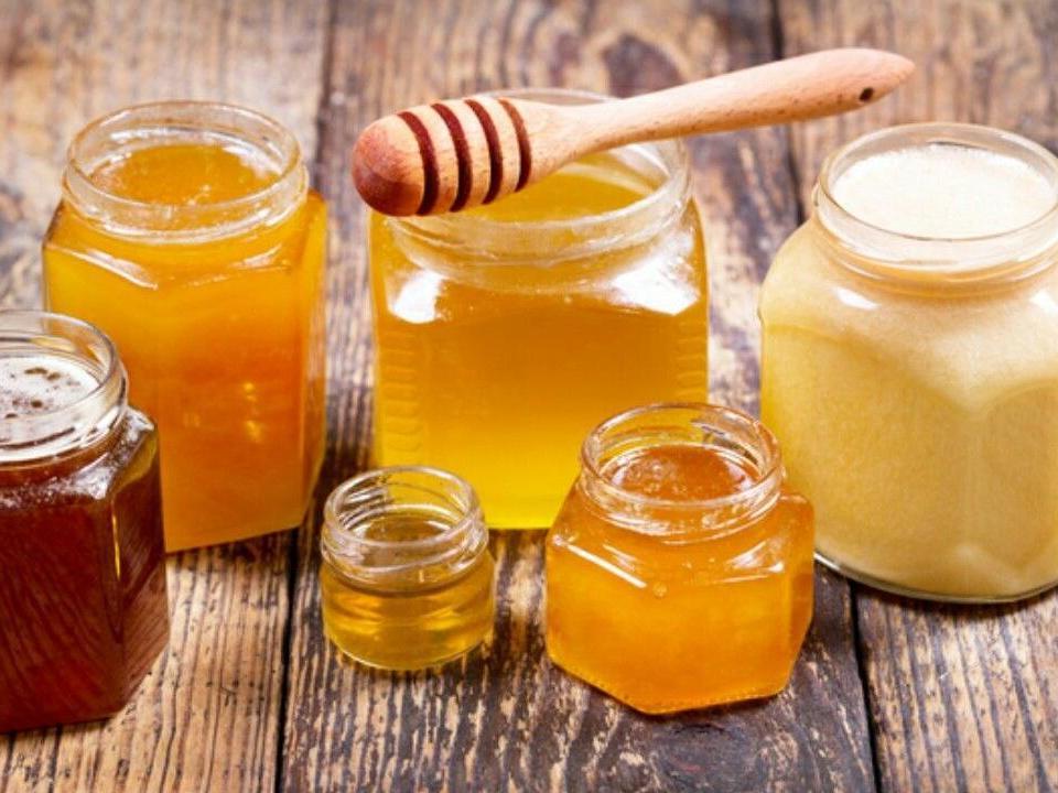 Вологжан «серебряного» возраста приглашают на дегустацию меда